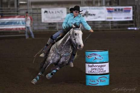 Welcome To Pioneer Paints | Barrel Horses, Broodmares and